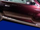 RVS deurstijlen cabrio_